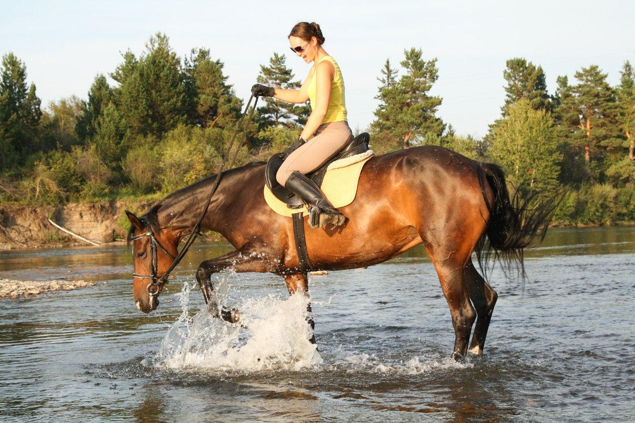 Ольга Дидикова, владелица конюшни, вет.врач, сертифицированный конный инструктор.